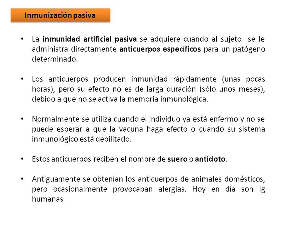 La inmunidad artificial pasiva se adquiere cuando al sujeto se le administra directamente anticuerpos específicos para un patógeno determinado. Los an
