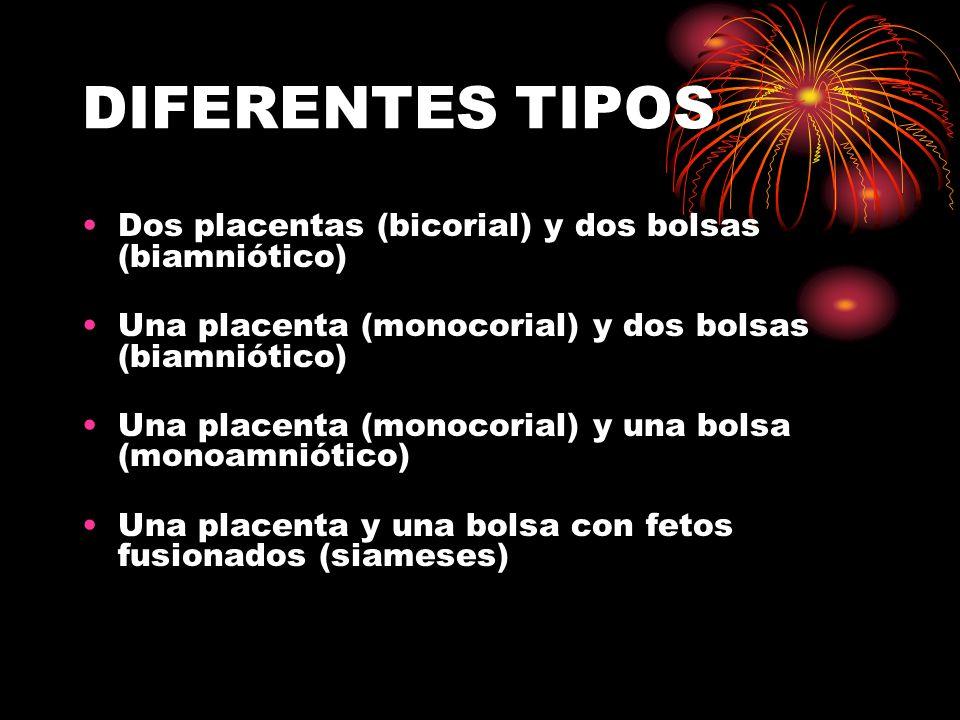 DIFERENTES TIPOS Dos placentas (bicorial) y dos bolsas (biamniótico) Una placenta (monocorial) y dos bolsas (biamniótico) Una placenta (monocorial) y