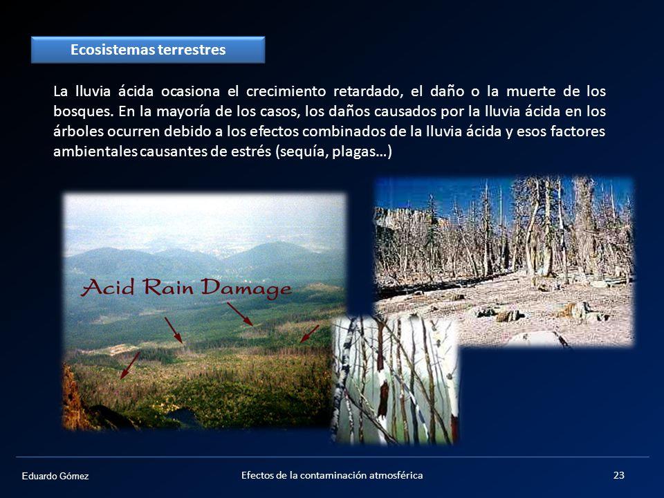 Eduardo Gómez La lluvia ácida ocasiona el crecimiento retardado, el daño o la muerte de los bosques. En la mayoría de los casos, los daños causados po