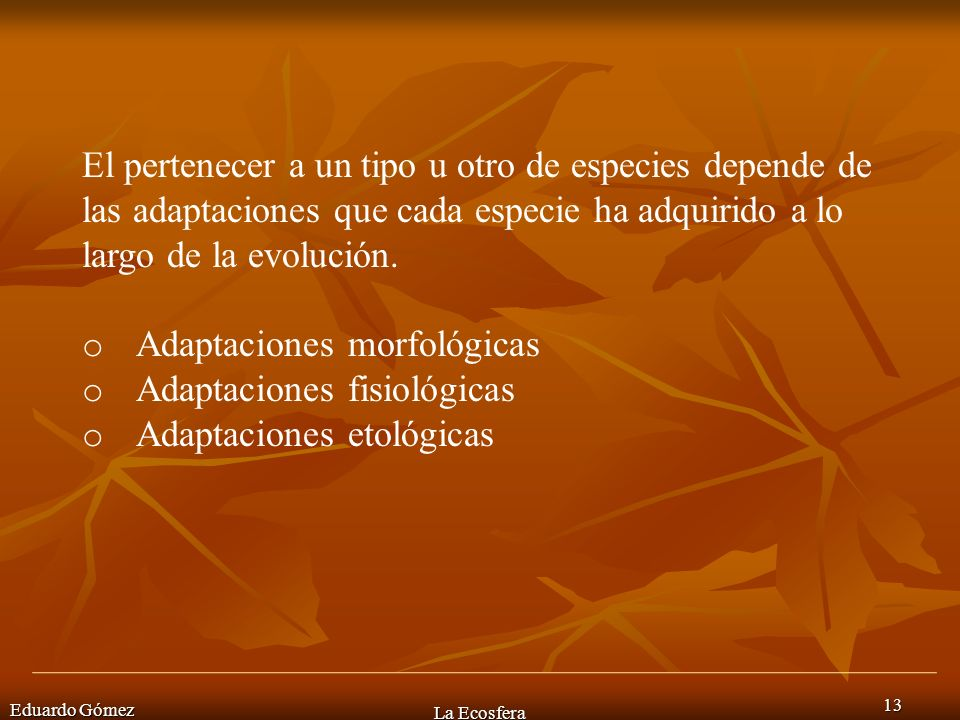 Eduardo Gómez La Ecosfera 13 El pertenecer a un tipo u otro de especies depende de las adaptaciones que cada especie ha adquirido a lo largo de la evo