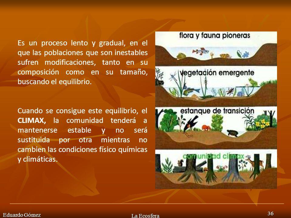 Eduardo Gómez La Ecosfera 36 Es un proceso lento y gradual, en el que las poblaciones que son inestables sufren modificaciones, tanto en su composició