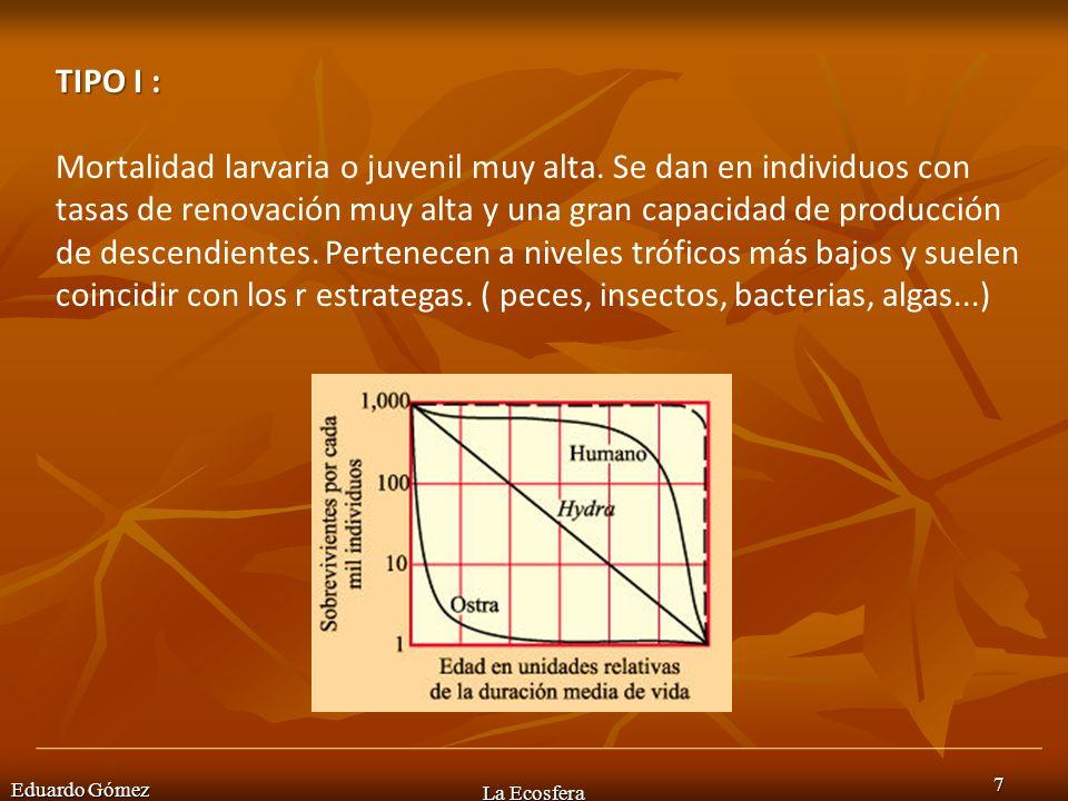 Eduardo Gómez La Ecosfera 7 TIPO I : Mortalidad larvaria o juvenil muy alta. Se dan en individuos con tasas de renovación muy alta y una gran capacida