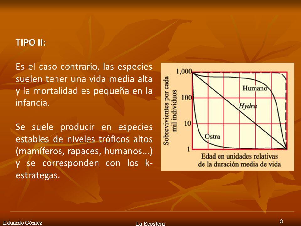Eduardo Gómez La Ecosfera 8 TIPO II: Es el caso contrario, las especies suelen tener una vida media alta y la mortalidad es pequeña en la infancia. Se