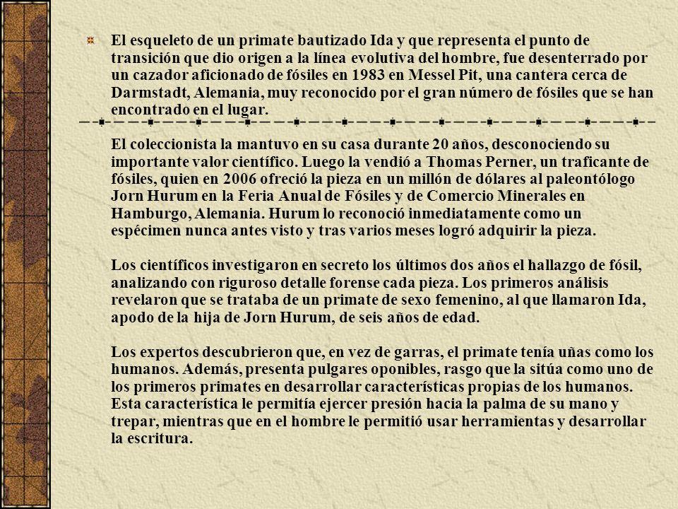 TEORÍA EVOLUTIVA DE LAMARCK Juan Bautista Lamarck Juan Bautista Lamarck fue el primer naturalista que formuló una teoría explicativa sobre los procesos evolutivos.