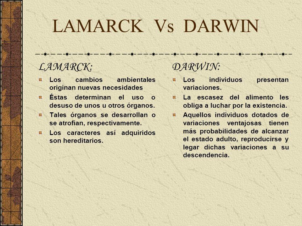 LAMARCK Vs DARWIN LAMARCK: Los cambios ambientales originan nuevas necesidades Éstas determinan el uso o desuso de unos u otros órganos. Tales órganos