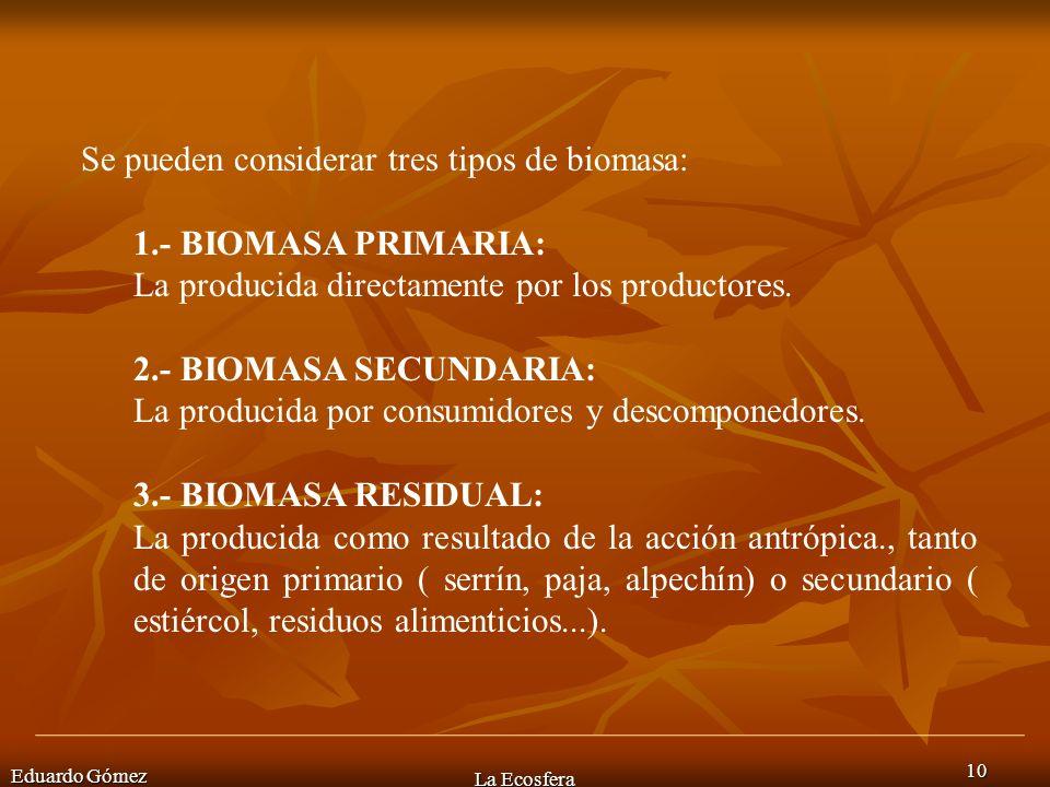 Eduardo Gómez La Ecosfera 10 Se pueden considerar tres tipos de biomasa: 1.- BIOMASA PRIMARIA: La producida directamente por los productores. 2.- BIOM