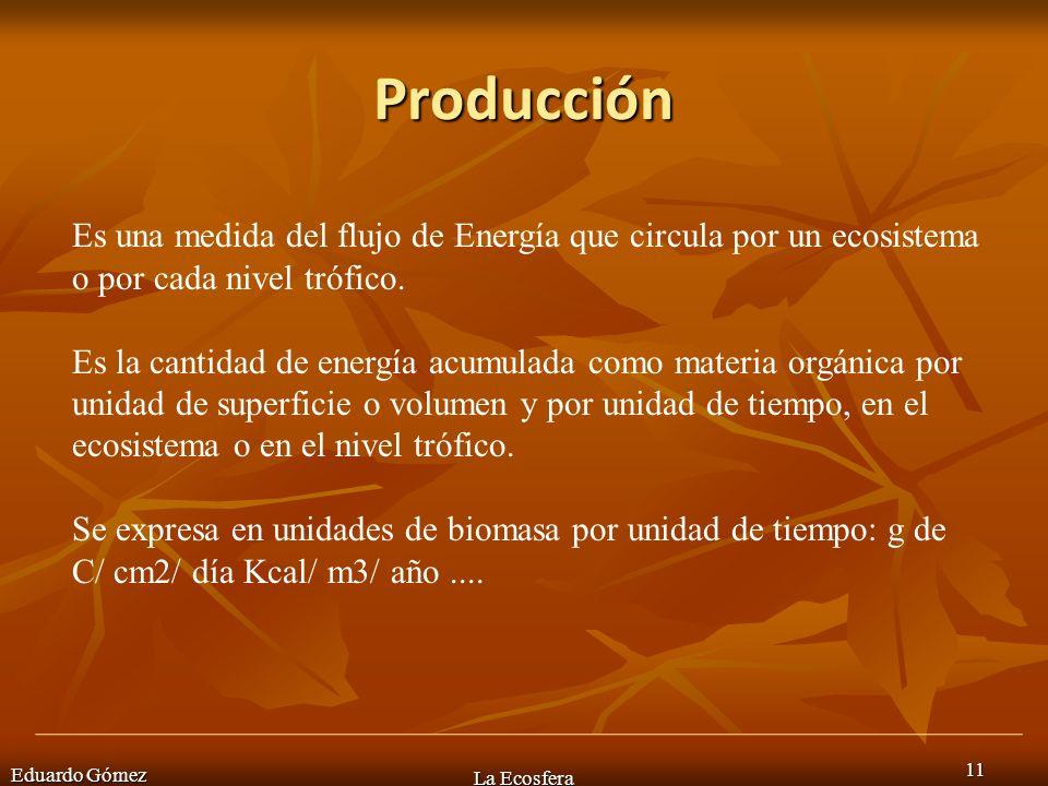 Producción Eduardo Gómez La Ecosfera 11 Es una medida del flujo de Energía que circula por un ecosistema o por cada nivel trófico. Es la cantidad de e