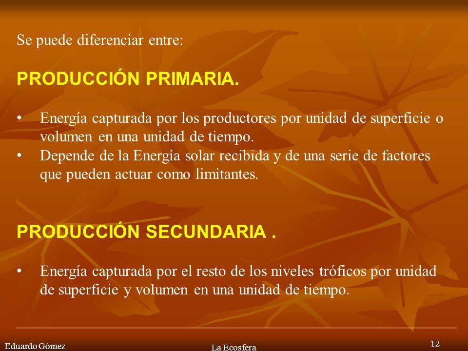 Eduardo Gómez La Ecosfera 12 Se puede diferenciar entre: PRODUCCIÓN PRIMARIA. Energía capturada por los productores por unidad de superficie o volumen
