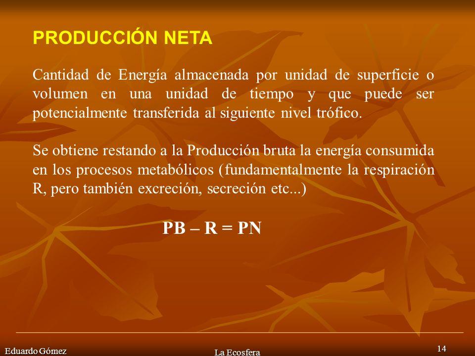 Eduardo Gómez La Ecosfera 14 PRODUCCIÓN NETA Cantidad de Energía almacenada por unidad de superficie o volumen en una unidad de tiempo y que puede ser