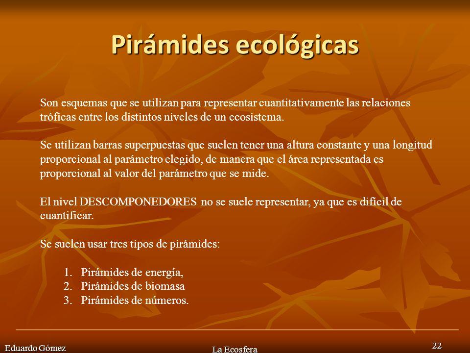 Pirámides ecológicas Eduardo Gómez La Ecosfera 22 Son esquemas que se utilizan para representar cuantitativamente las relaciones tróficas entre los di