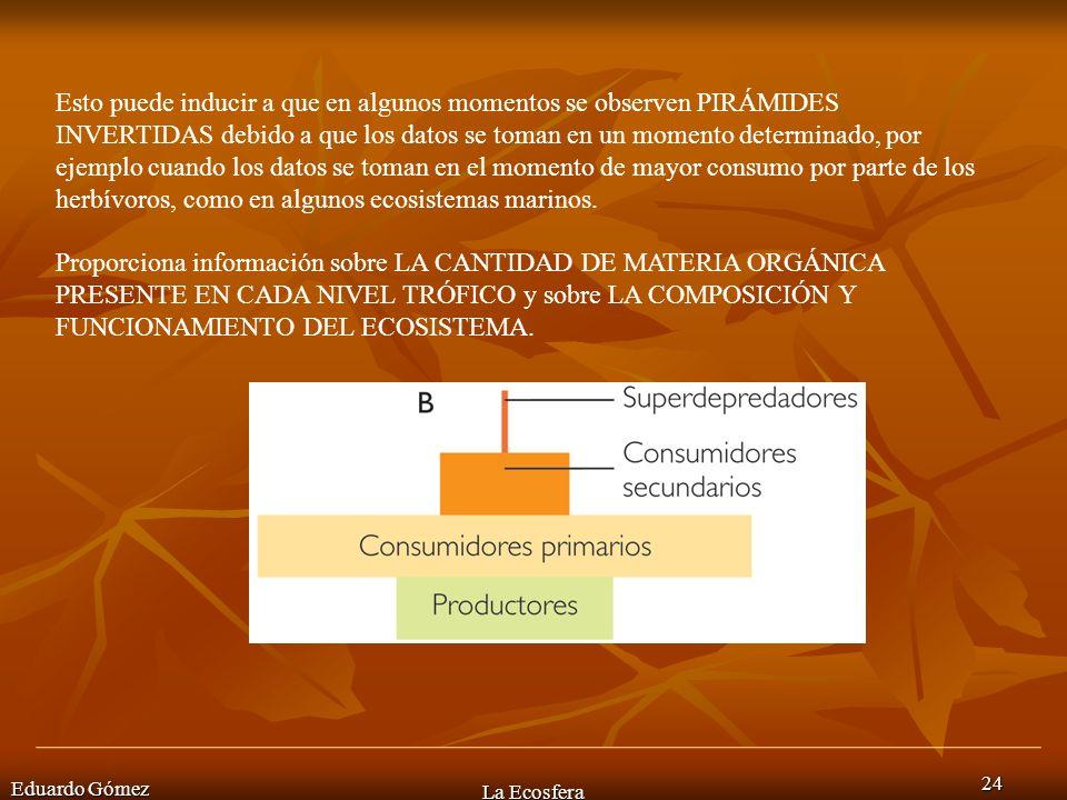 Eduardo Gómez La Ecosfera 24 Esto puede inducir a que en algunos momentos se observen PIRÁMIDES INVERTIDAS debido a que los datos se toman en un momen