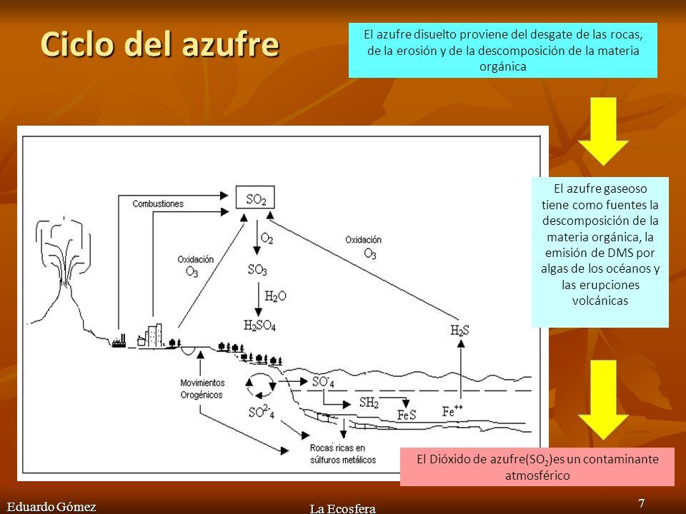Ciclo del azufre Eduardo Gómez La Ecosfera 7 El azufre disuelto proviene del desgate de las rocas, de la erosión y de la descomposición de la materia