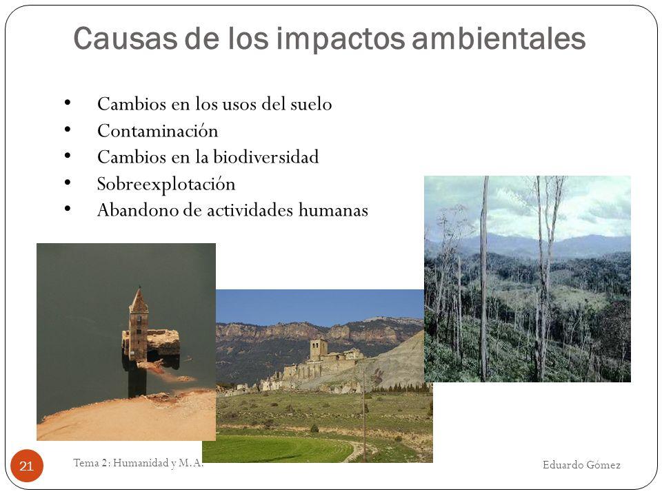 Causas de los impactos ambientales Eduardo Gómez Tema 2: Humanidad y M.A. 21 Cambios en los usos del suelo Contaminación Cambios en la biodiversidad S