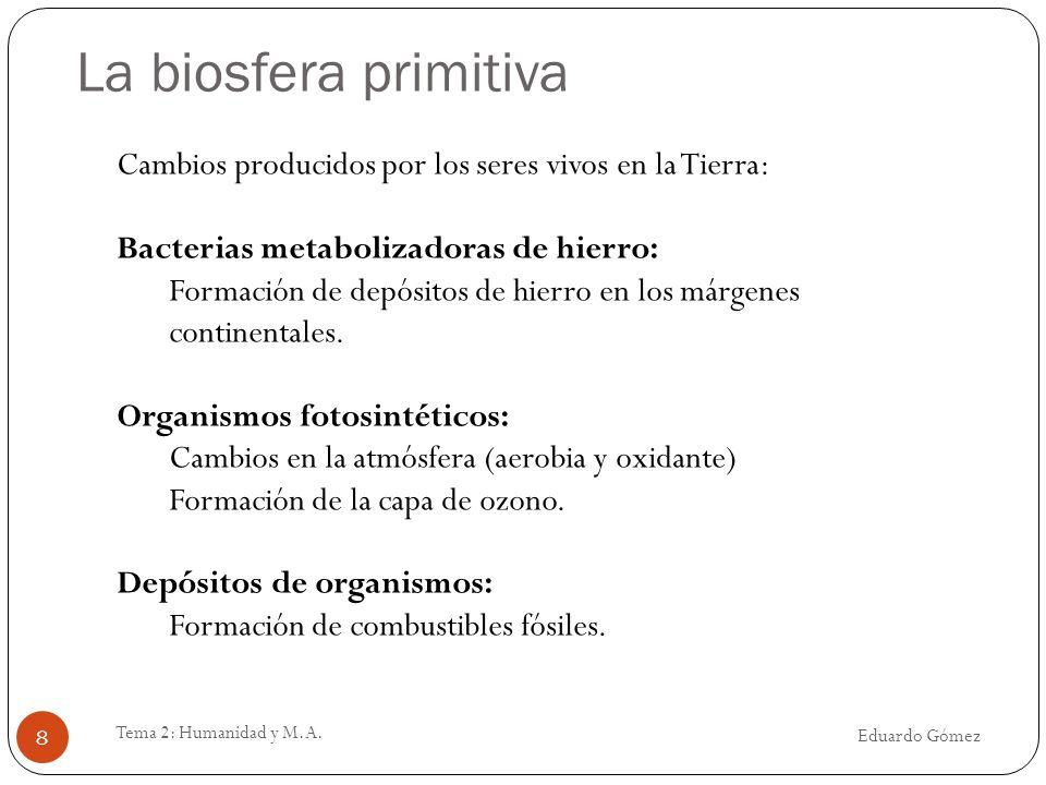 La biosfera primitiva Eduardo Gómez Tema 2: Humanidad y M.A. 8 Cambios producidos por los seres vivos en la Tierra: Bacterias metabolizadoras de hierr