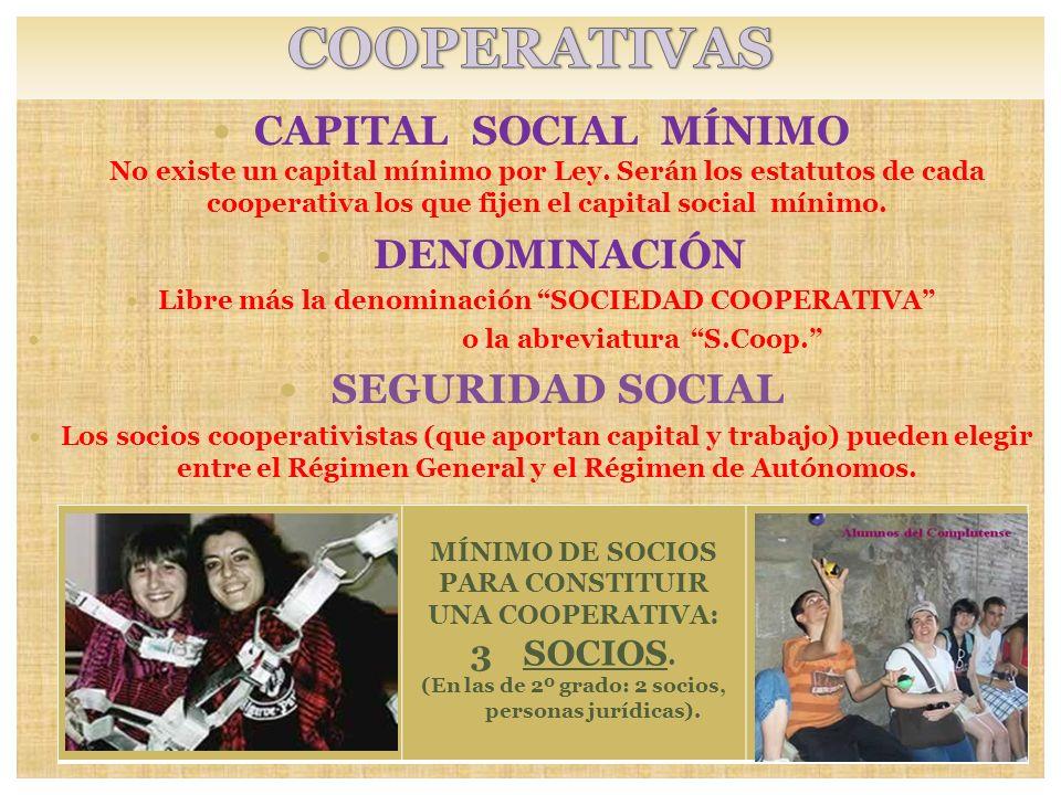 CAPITAL SOCIAL MÍNIMO No existe un capital mínimo por Ley. Serán los estatutos de cada cooperativa los que fijen el capital social mínimo. DENOMINACIÓ