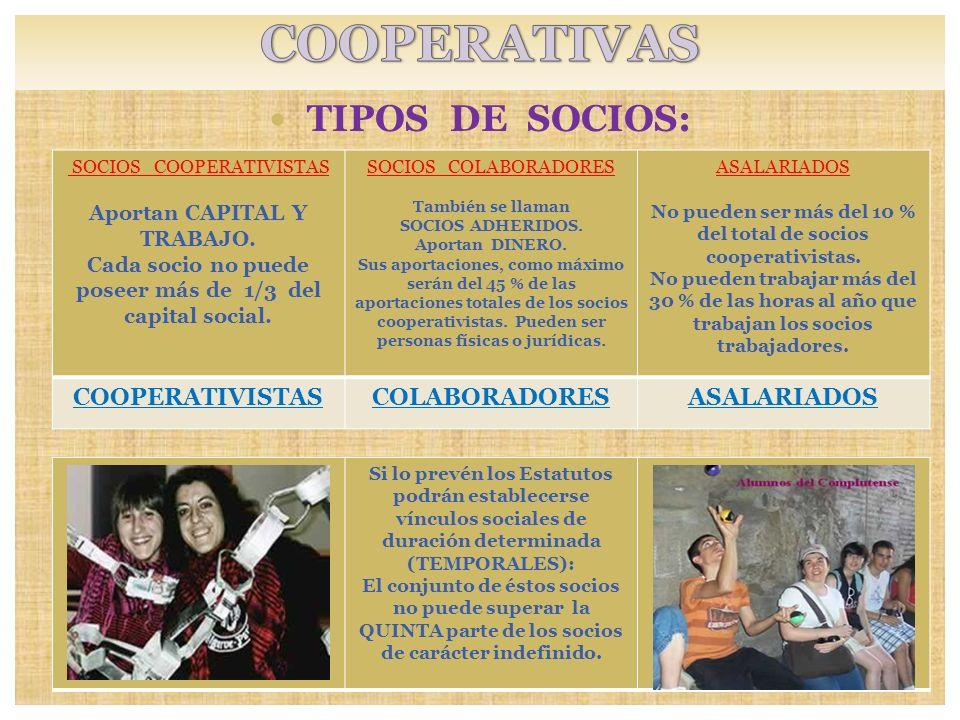 TIPOS DE SOCIOS: Si lo prevén los Estatutos podrán establecerse vínculos sociales de duración determinada (TEMPORALES): El conjunto de éstos socios no