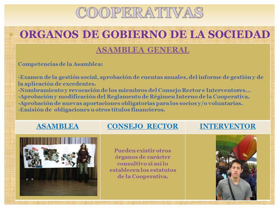 ORGANOS DE GOBIERNO DE LA SOCIEDAD SOCIOS: Pueden existir otros órganos de carácter consultivo si así lo establecen los estatutos de la Cooperativa. A
