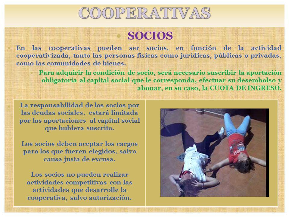 SOCIOS En las cooperativas pueden ser socios, en función de la actividad cooperativizada, tanto las personas físicas como jurídicas, públicas o privad