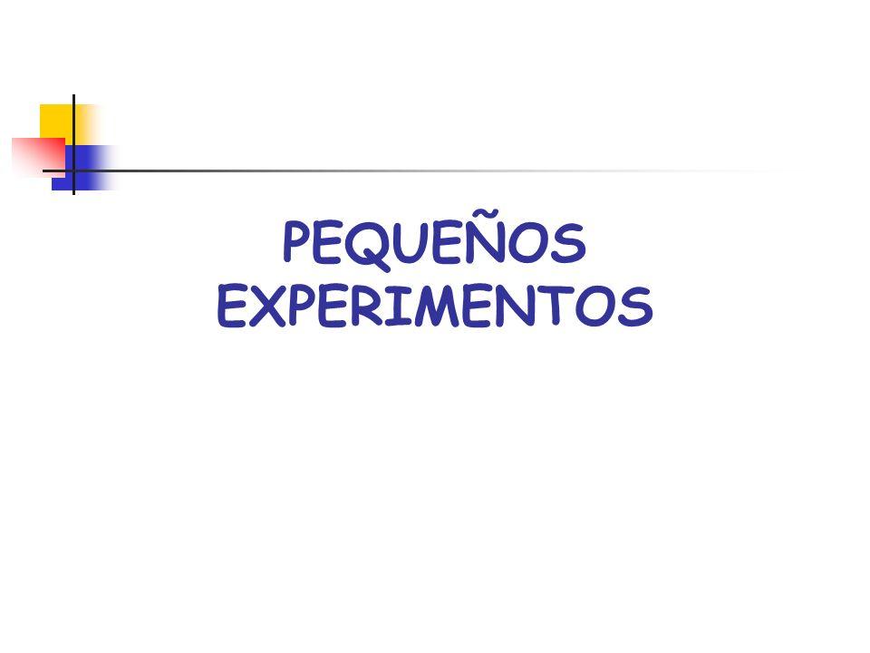 PEQUEÑOS EXPERIMENTOS