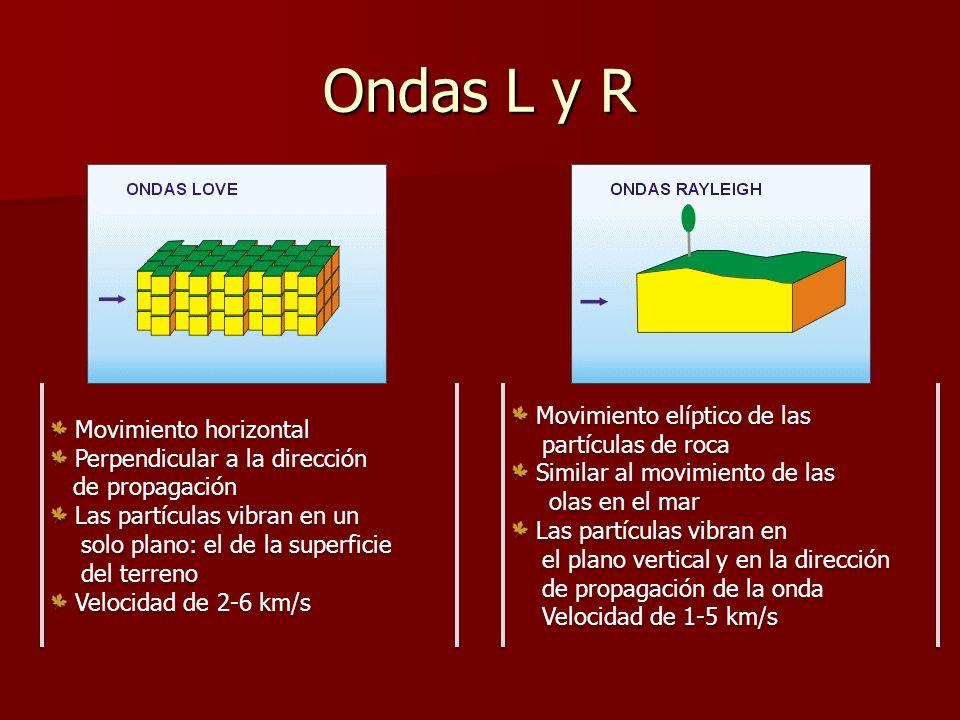 Ondas L y R Movimiento horizontal Perpendicular a la dirección de propagación Las partículas vibran en un solo plano: el de la superficie del terreno