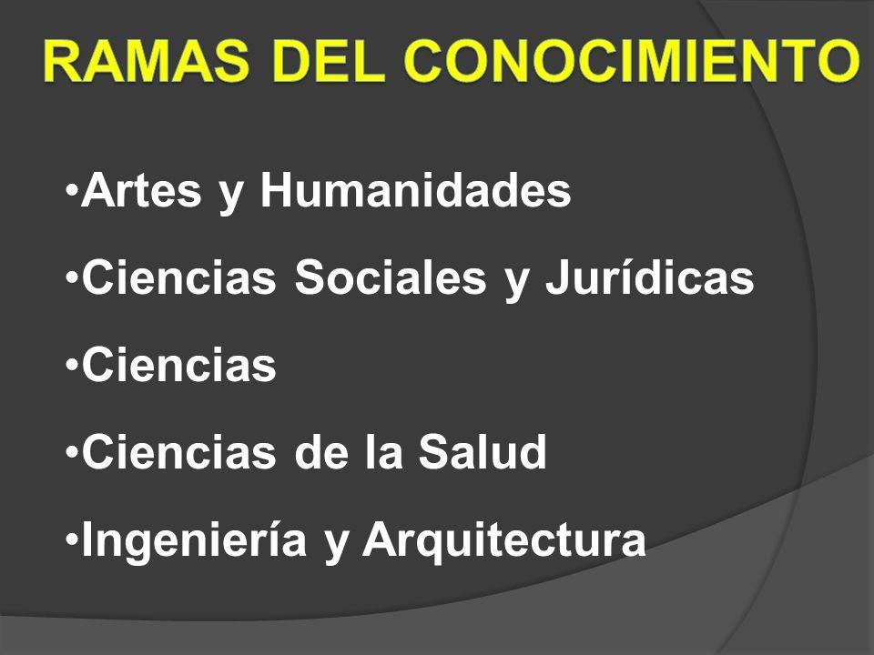Artes y Humanidades Ciencias Sociales y Jurídicas Ciencias Ciencias de la Salud Ingeniería y Arquitectura