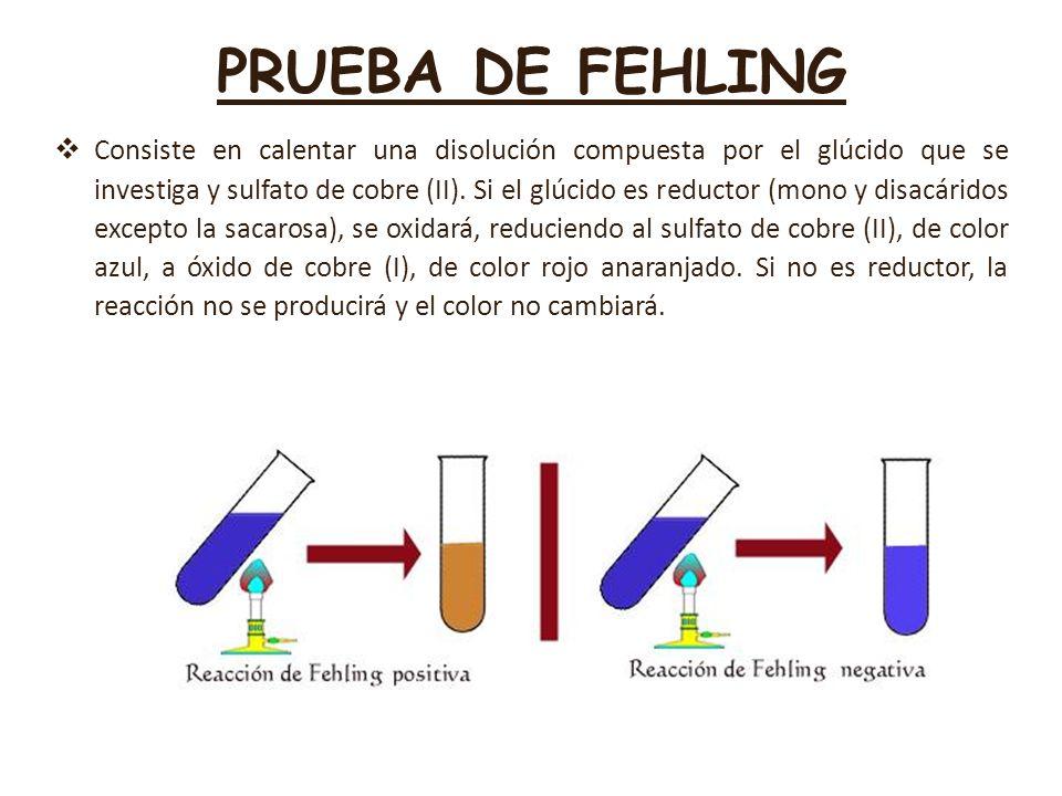 PRUEBA DE FEHLING Consiste en calentar una disolución compuesta por el glúcido que se investiga y sulfato de cobre (II). Si el glúcido es reductor (mo