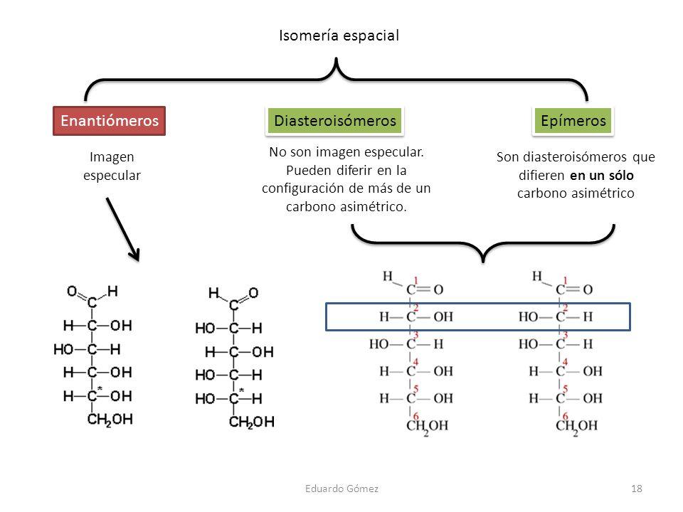 Eduardo Gómez18 Isomería espacial Enantiómeros Imagen especular Epímeros Son diasteroisómeros que difieren en un sólo carbono asimétrico Diasteroisóme