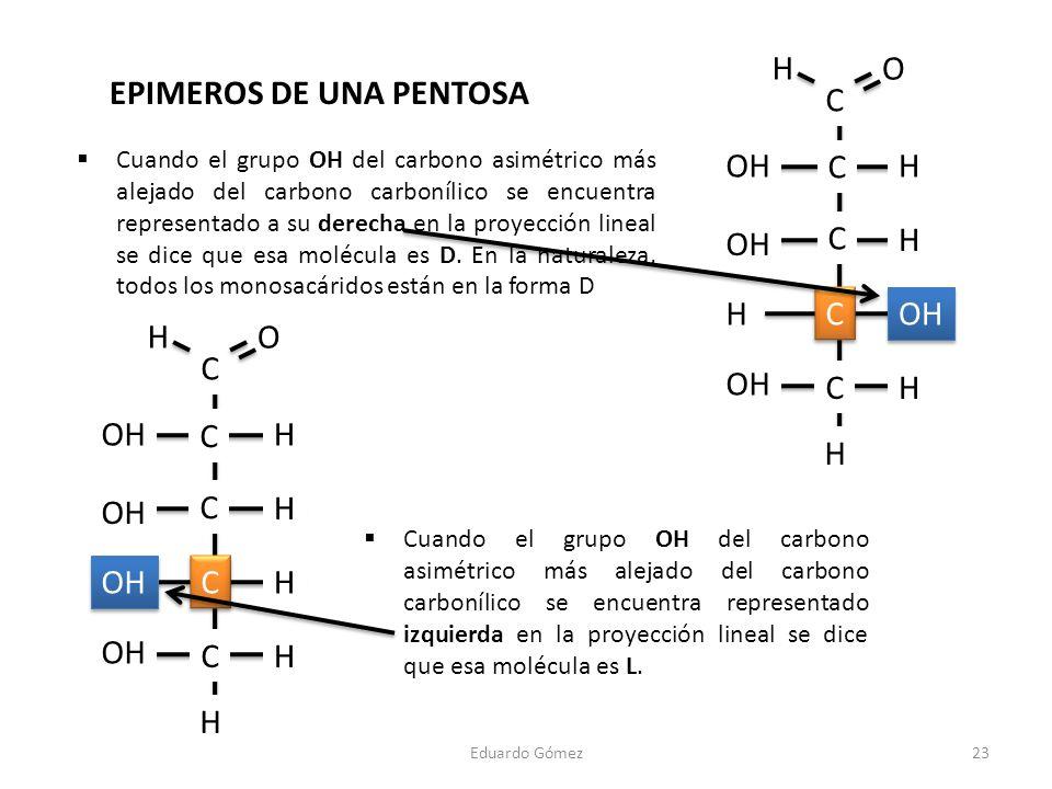 Eduardo Gómez23 Cuando el grupo OH del carbono asimétrico más alejado del carbono carbonílico se encuentra representado a su derecha en la proyección