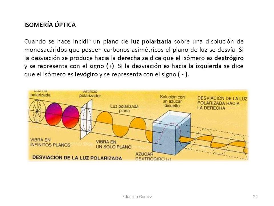 Eduardo Gómez24 ISOMERÍA ÓPTICA Cuando se hace incidir un plano de luz polarizada sobre una disolución de monosacáridos que poseen carbonos asimétrico