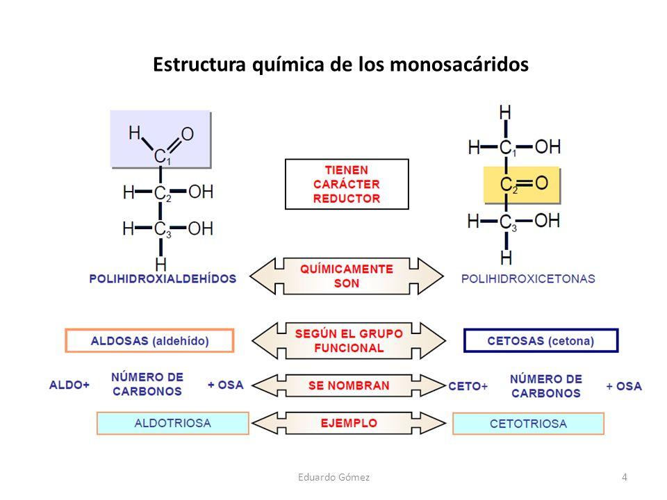 4 Estructura química de los monosacáridos