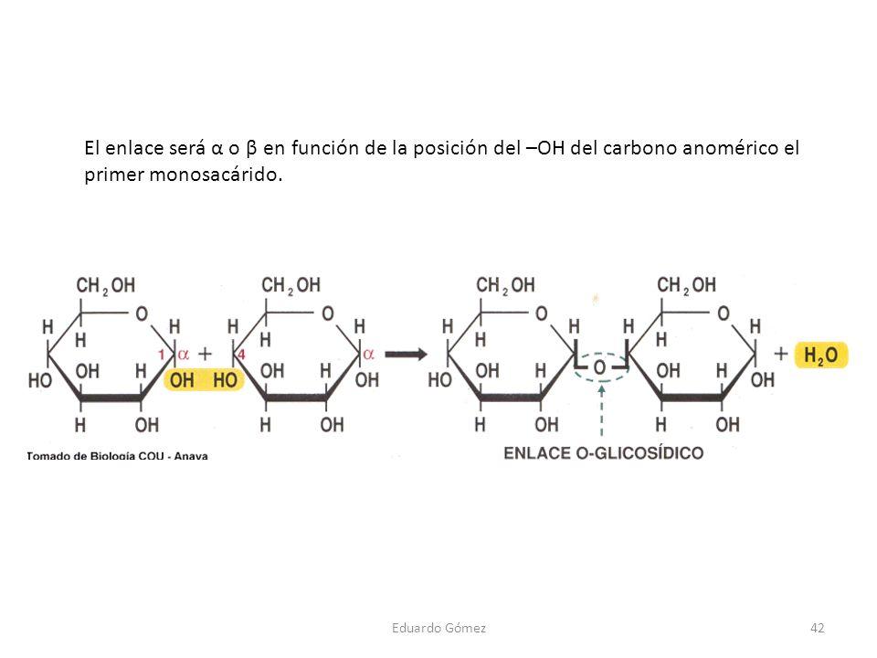 Eduardo Gómez42 El enlace será α o β en función de la posición del –OH del carbono anomérico el primer monosacárido.