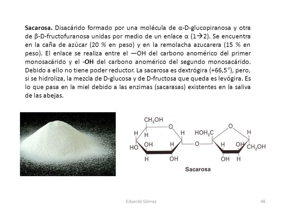 Sacarosa. Disacárido formado por una molécula de α-D-glucopiranosa y otra de β-D-fructofuranosa unidas por medio de un enlace α (1 2). Se encuentra en