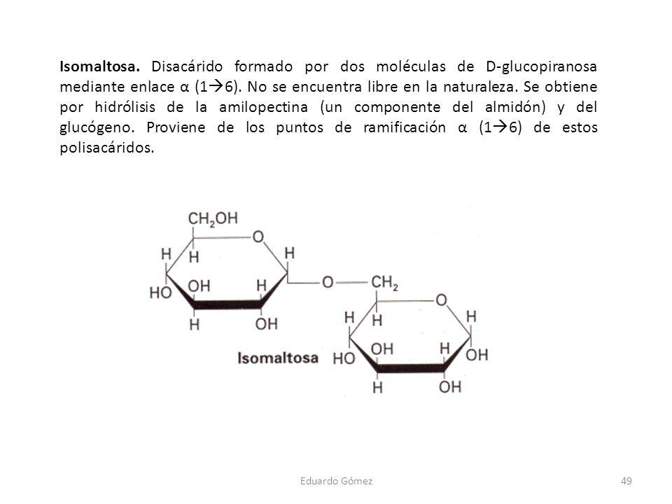 Isomaltosa. Disacárido formado por dos moléculas de D-glucopiranosa mediante enlace α (1 6). No se encuentra libre en la naturaleza. Se obtiene por hi