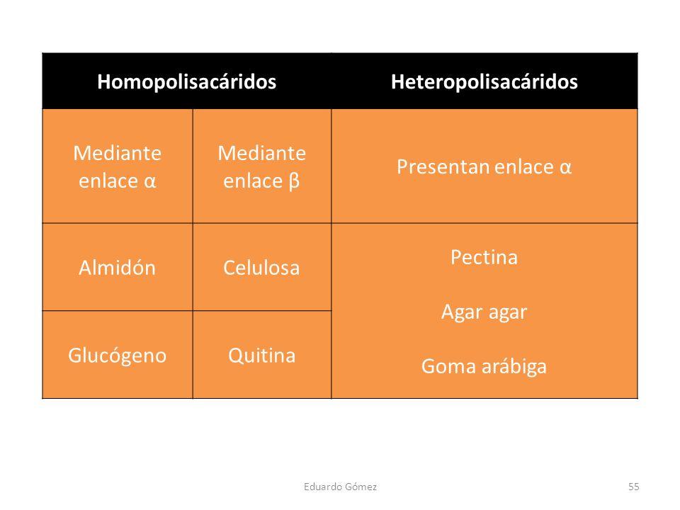 HomopolisacáridosHeteropolisacáridos Mediante enlace α Mediante enlace β Presentan enlace α AlmidónCelulosa Pectina Agar agar Goma arábiga GlucógenoQu