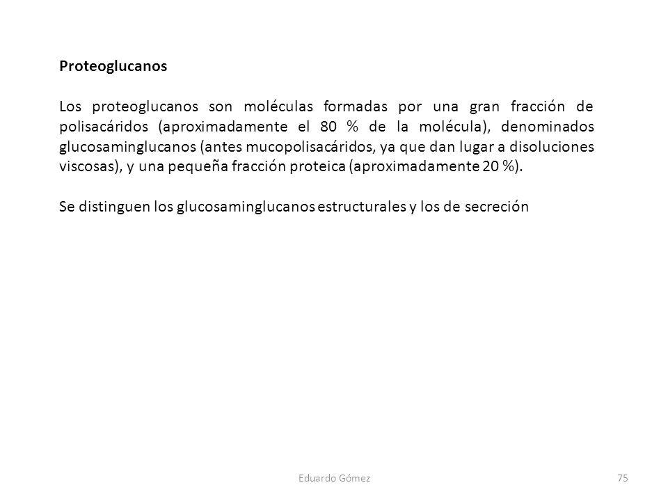 Proteoglucanos Los proteoglucanos son moléculas formadas por una gran fracción de polisacáridos (aproximadamente el 80 % de la molécula), denominados