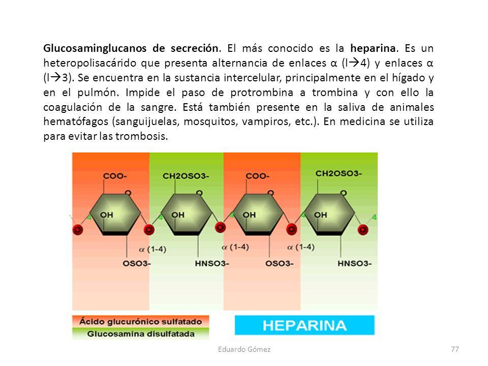 Glucosaminglucanos de secreción. El más conocido es la heparina. Es un heteropolisacárido que presenta alternancia de enlaces α (l 4) y enlaces α (l 3
