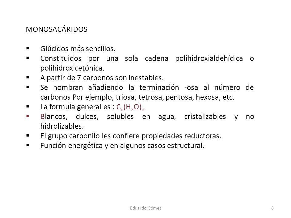 MONOSACÁRIDOS Glúcidos más sencillos. Constituidos por una sola cadena polihidroxialdehídica o polihidroxicetónica. A partir de 7 carbonos son inestab