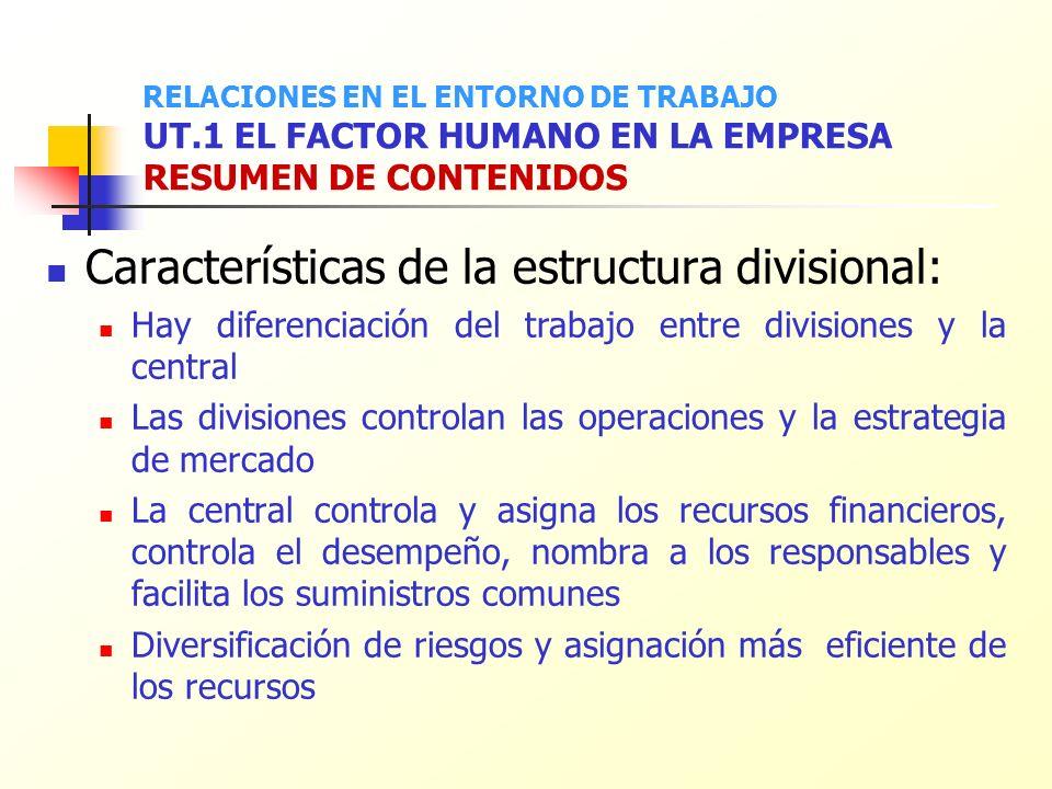 Características de la estructura divisional: Hay diferenciación del trabajo entre divisiones y la central Las divisiones controlan las operaciones y l