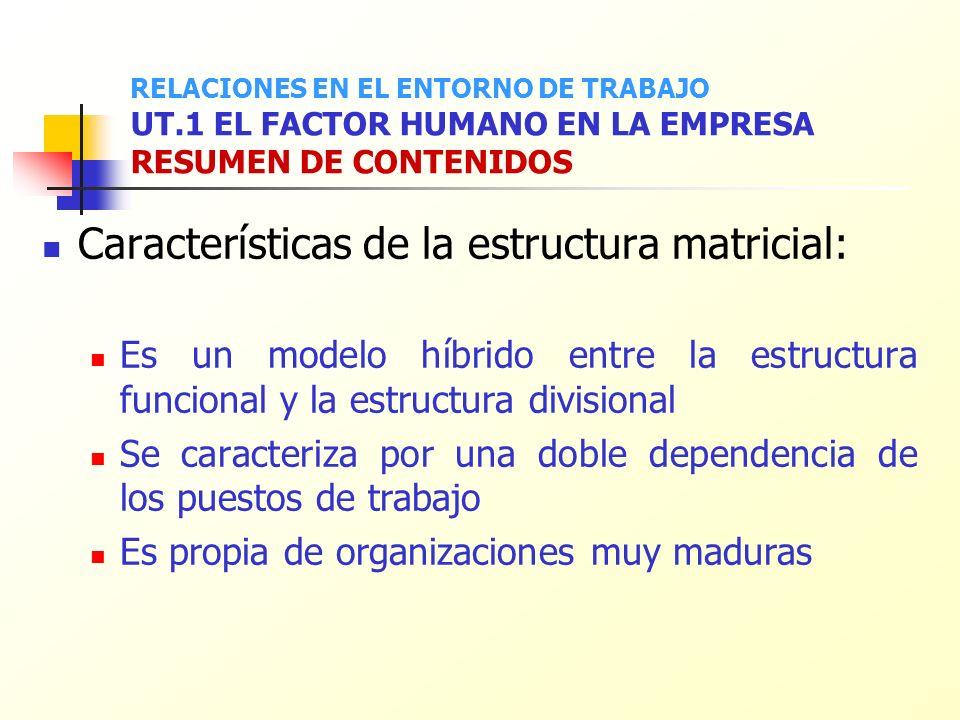 Características de la estructura matricial: Es un modelo híbrido entre la estructura funcional y la estructura divisional Se caracteriza por una doble