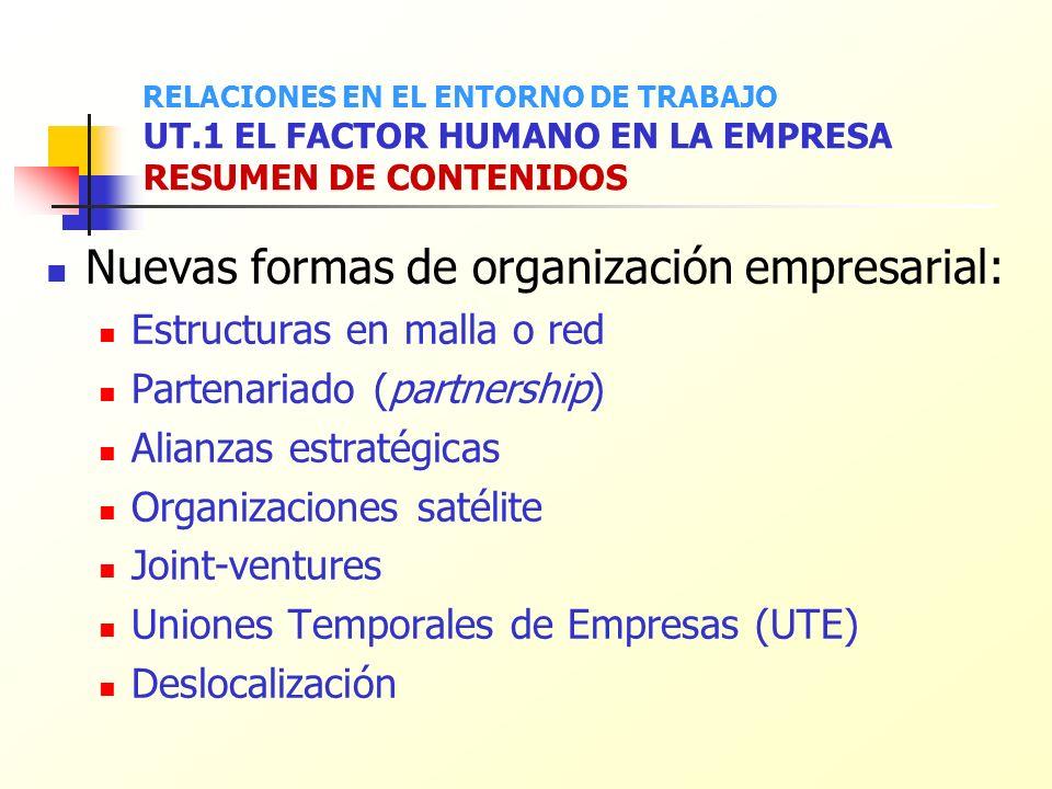 Nuevas formas de organización empresarial: Estructuras en malla o red Partenariado (partnership) Alianzas estratégicas Organizaciones satélite Joint-v