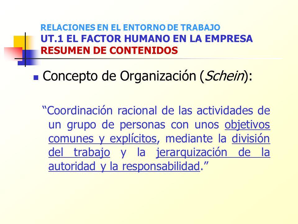 Concepto de Organización (Schein): Coordinación racional de las actividades de un grupo de personas con unos objetivos comunes y explícitos, mediante