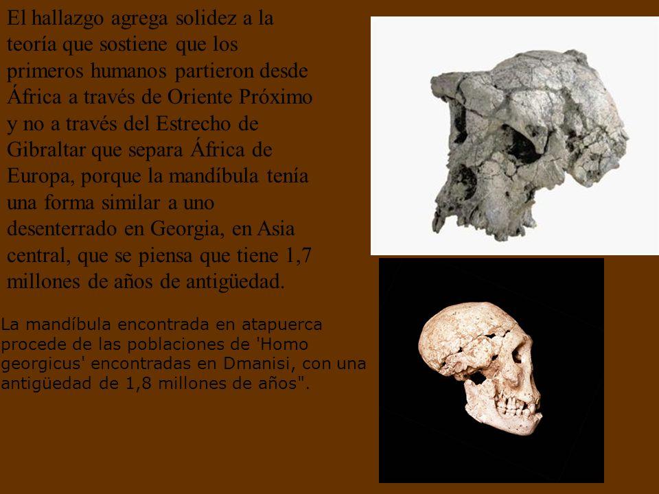 Investigadores de este yacimiento descubrieron el hueso de una mandíbula, dientes y herramientas sencillas en una caverna de Sima del Elefante, en la