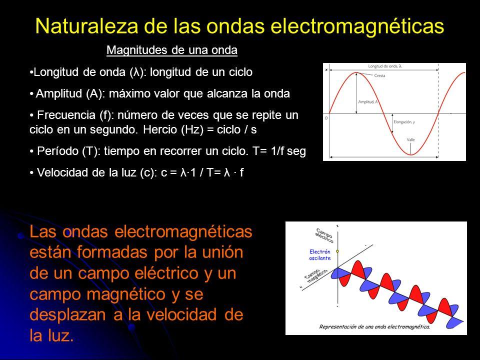 Naturaleza de las ondas electromagnéticas Las ondas electromagnéticas están formadas por la unión de un campo eléctrico y un campo magnético y se desp