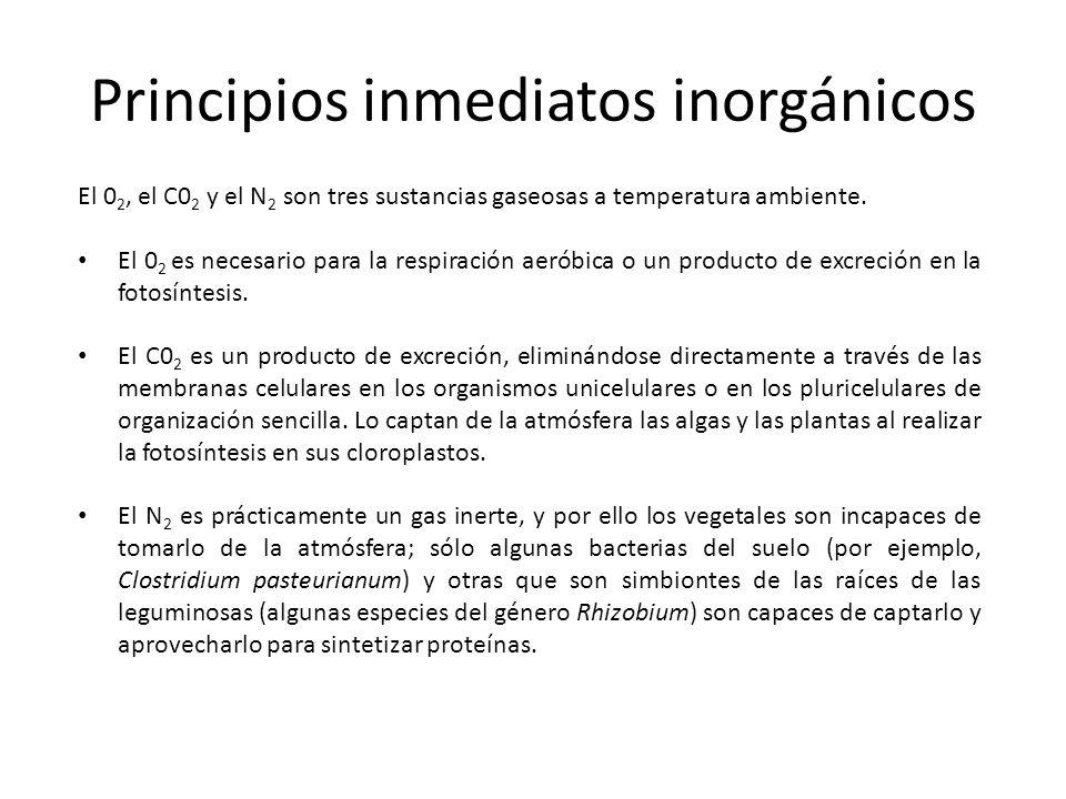 Principios inmediatos inorgánicos El 0 2, el C0 2 y el N 2 son tres sustancias gaseosas a temperatura ambiente. El 0 2 es necesario para la respiració
