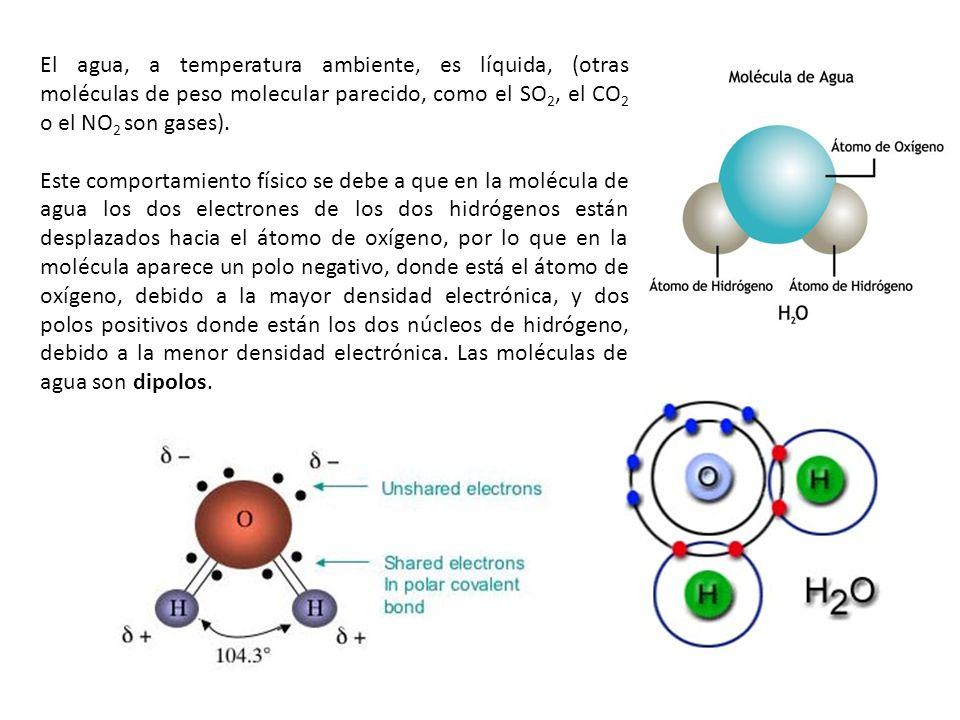 El agua, a temperatura ambiente, es líquida, (otras moléculas de peso molecular parecido, como el SO 2, el CO 2 o el NO 2 son gases). Este comportamie