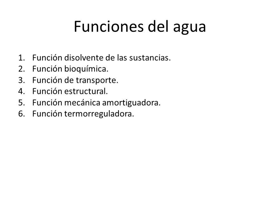 Funciones del agua 1.Función disolvente de las sustancias. 2.Función bioquímica. 3.Función de transporte. 4.Función estructural. 5.Función mecánica am