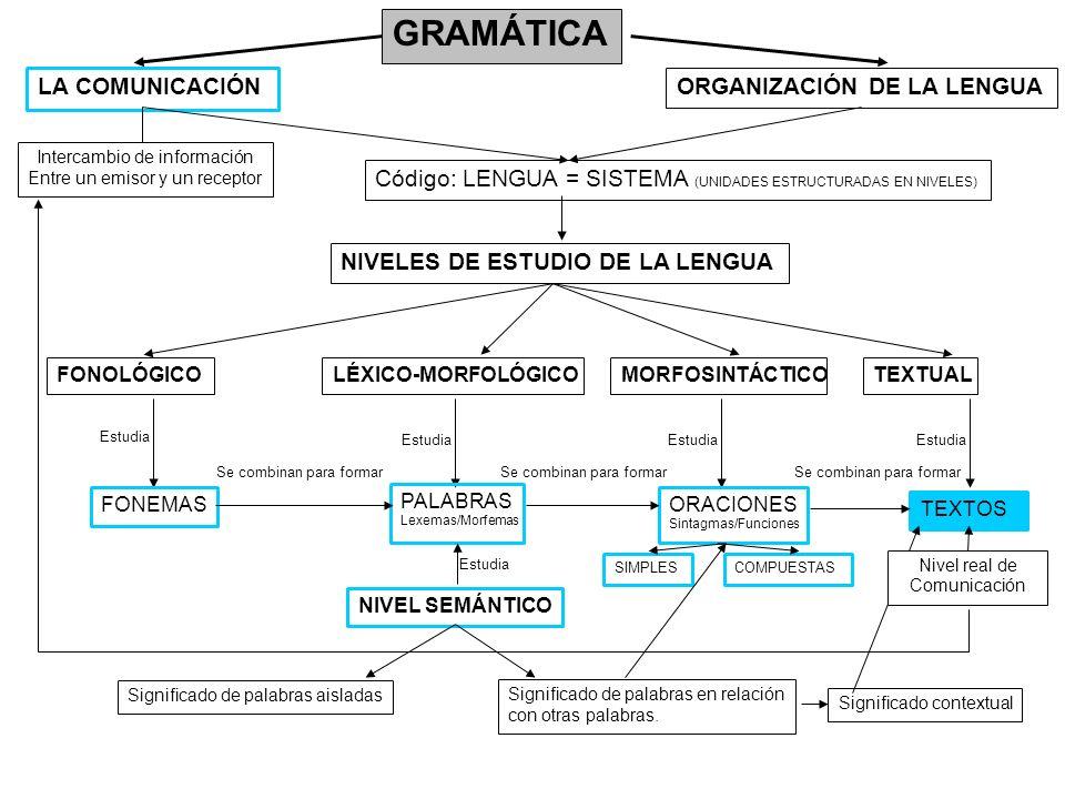 GRAMÁTICA LA COMUNICACIÓNORGANIZACIÓN DE LA LENGUA NIVELES DE ESTUDIO DE LA LENGUA FONOLÓGICOLÉXICO-MORFOLÓGICOMORFOSINTÁCTICOTEXTUAL Estudia FONEMAS