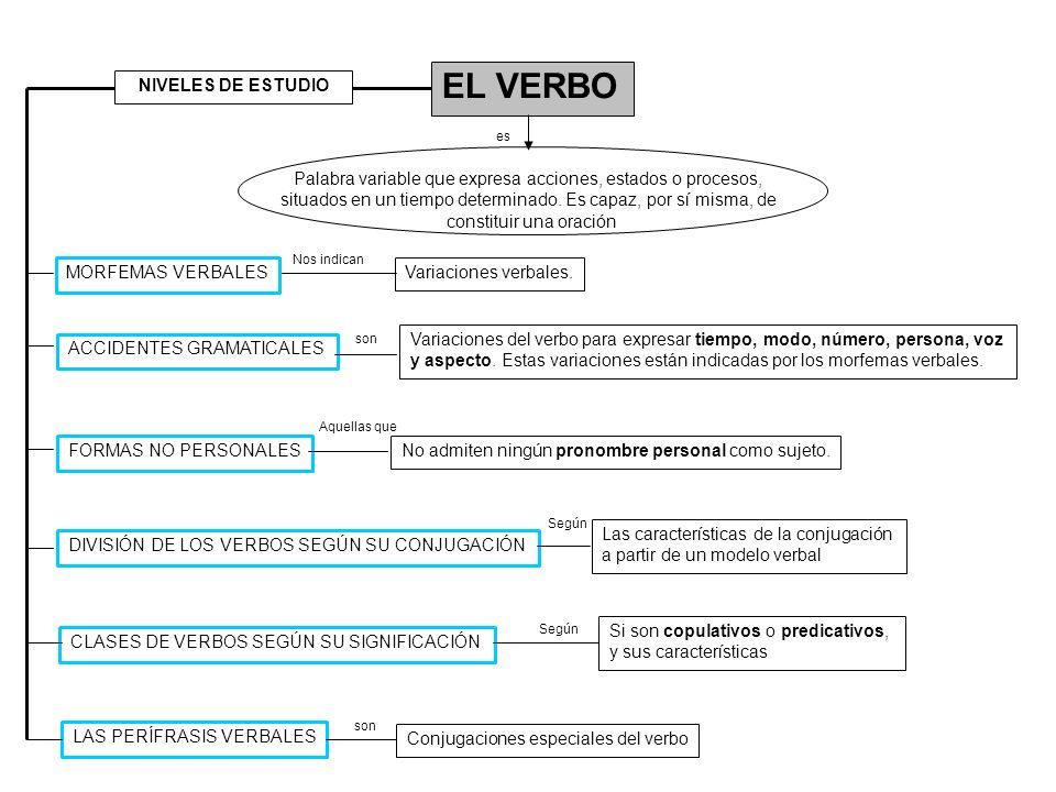 EL VERBO ACCIDENTES GRAMATICALES Palabra variable que expresa acciones, estados o procesos, situados en un tiempo determinado. Es capaz, por sí misma,