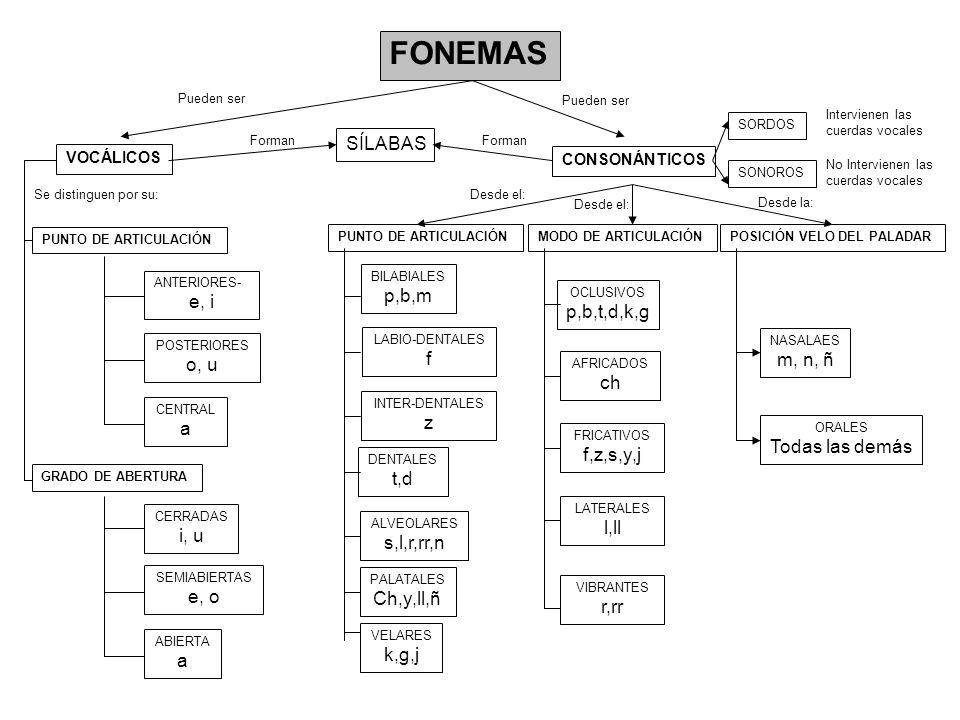 CLASES GRAMATICALES DE PALABRAS INVARIABLES (sin morfemas gramaticales) VARIABLES (tienen morfemas gramaticales) NOMBRE ( o sustantivo) DETERMINANTE ADJETIVO VERBO PRONOMBRE CONJUNCIÓN ADVERBIO PREPOSICIÓN Núcleo del Sintagma Nominal Núcleo del Sintagma Verbal Palabras relacionantes Complementa a ESTRUCTURA Y SIGNIFICADO Determina a Complementa a Sustituye o equivale a