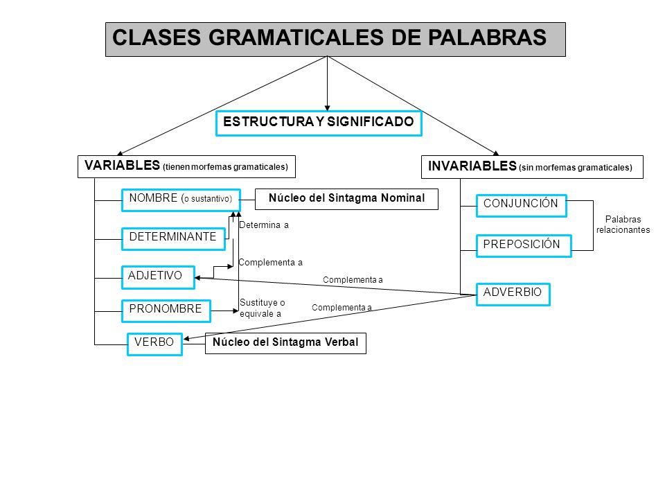 CLASES GRAMATICALES DE PALABRAS INVARIABLES (sin morfemas gramaticales) VARIABLES (tienen morfemas gramaticales) NOMBRE ( o sustantivo) DETERMINANTE A